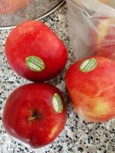 Des pommes bio et leurs étiquettes - Photo JYR - 02.20